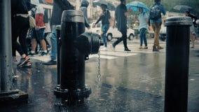 Slow Motion Pedestrians with Umbrellas on Rainy Streets of Manhattan. 9444 NEW YORK CITY - Circa October, 2017 - Pedestrians with umbrellas cross a rainy stock footage