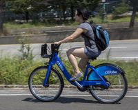 New York City Citibikes. Woman riding one of New York City's Citibikes Royalty Free Stock Image