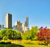 New York City cityscape on a sunny day Royalty Free Stock Photos