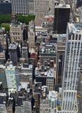 New York City fågels sikt för öga Arkivfoton