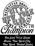 New york city graphic design vector art Royalty Free Stock Image