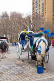New York City Horse-Drawn Carriage Stock Photos