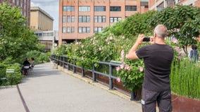 NEW YORK CITY - JULI 29,2014: Bemannen Sie die Herstellung eines Bildes in der hohen Linie Park Lizenzfreies Stockbild