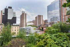 NEW YORK CITY - JULY 29,2014: High Line Park New York Royalty Free Stock Photos