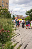 NEW YORK CITY - JULY 29,2014: People walking in High Line Park Royalty Free Stock Photography