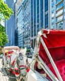 NEW YORK CITY - JUNI 2013: Hästvagnen väntar på kunder på 59 Royaltyfria Bilder