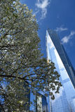 New York City. Looking up at World Trade Center Tower One royalty free stock image