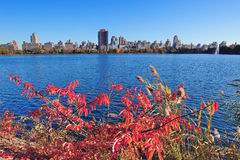 New York City Manhattan Autumn Stock Photo