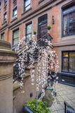 New York City Manhattan brownstone Royalty Free Stock Photography