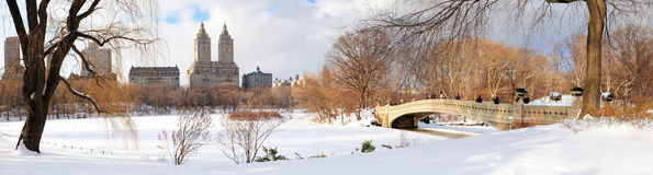 New York City Manhattan Central Park panorama Royalty Free Stock Images