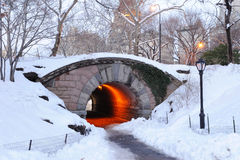 New York City Manhattan Central Park in winter. With bridge Royalty Free Stock Photography