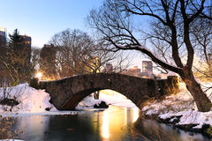 New York City Manhattan Central Park in winter. With bridge Stock Image