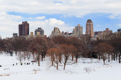 New York City Manhattan Central Park in winter Stock Image