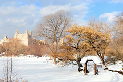 New York City Manhattan Central Park in winter Stock Images