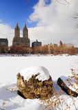 New York City Manhattan Central Park in winter Royalty Free Stock Image