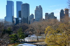 New York City Manhattan Central Parkpanorama i vinter Arkivfoton