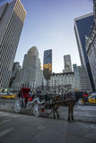 New York City Manhattan horse and buggy Royalty Free Stock Photo