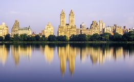 Only in New York City royalty free stock photo
