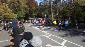 New-York-City-Marathon 2014 stock footage