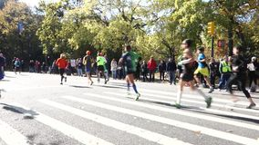 2014 New York City Marathon stock video