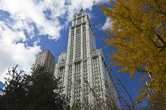 NEW YORK CITY, November 19, 2013: Woolworth Building, New York C Stock Images