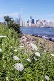 New York City på 4th Juli 201 Royaltyfri Bild