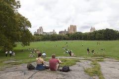 New York City 12 september 2015: folket kopplar av på gräs i centr Arkivbild