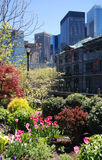 New York City in Spring Stock Photo