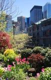 New York City in Spring Stock Photo