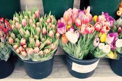 New York city Spring Stock Photo