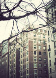 New York City street Stock Photography