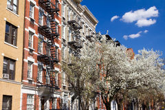 New York City Street in Spring Stock Images