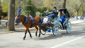 Carriage with tourists in central park. New York City, USA: Apr 2018 - Carriage with tourists in central park stock video