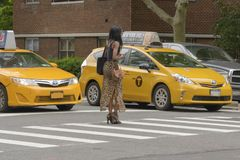 The American woman crosses the pedestrian crossing while the tax. New York City, USA - June 08, 2017: New York yellow taxi cab stop at pedestrians traffic lights Royalty Free Stock Photography