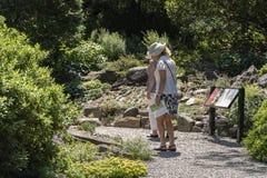 NEW YORK CITY, USA - 26. JUNI 2018: Ältere erwachsene Frauen, die in den Park gehen stockbild