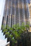 New York City Royalty Free Stock Photography