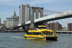 New York City Water Taxi under Brooklyn Bridge Stock Images