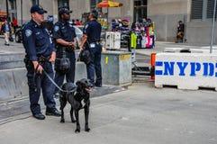 New- York Citypolizei-Hundestaffel, die in die Stadt patrouilliert Stockfoto