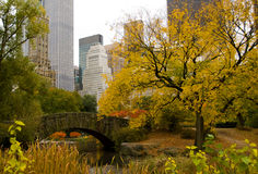 New- York Cityskyline und -Central Park im Herbst