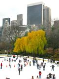 NEW YORK - DECEMBER 3: Isskateboradåkare som har gyckel i Central Park Arkivfoto