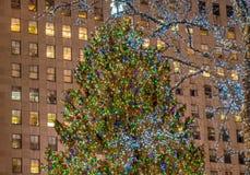New York - DECEMBER 20, 2013: Julgran på den Rockefeller cent Arkivfoto