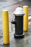 New York Fire Hydrant Stock Images