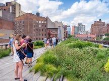 NEW YORK - GIUGNO 2013: La gente si muove seguendo l'alta linea parco della città Fotografia Stock Libera da Diritti