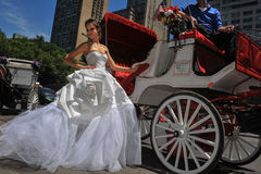 NEW YORK - 13 giugno: Pose di modello di Kalyn Hemphill davanti al trasporto del cavallo Immagini Stock