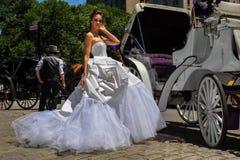 NEW YORK - 13 giugno: Pose di modello di Kalyn Hemphill davanti al trasporto del cavallo Immagine Stock Libera da Diritti