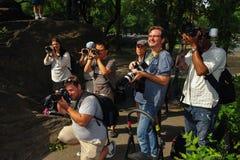 NEW YORK - 26. JULI: Fotografen, die Modelle während des ersten offiziellen Körper-Malerei-Ereignisses schießen Stockfoto