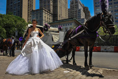 NEW YORK - June 13: Model Kalyn Hemphill poses in front of horse carriage Royalty Free Stock Photos