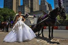 NEW YORK - 13. Juni: Vorbildliche Kalyn Hemphill-Haltungen vor Pferdewagen Lizenzfreie Stockfotos