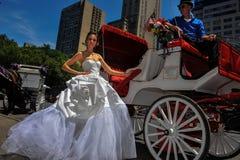 NEW YORK - 13. Juni: Vorbildliche Kalyn Hemphill-Haltungen vor Pferdewagen Stockfotografie