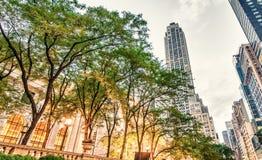 NEW YORK - 17. MAI: Touristen entspannen sich auf 5. Allee nahe allgemeinem Libr Stockfotos